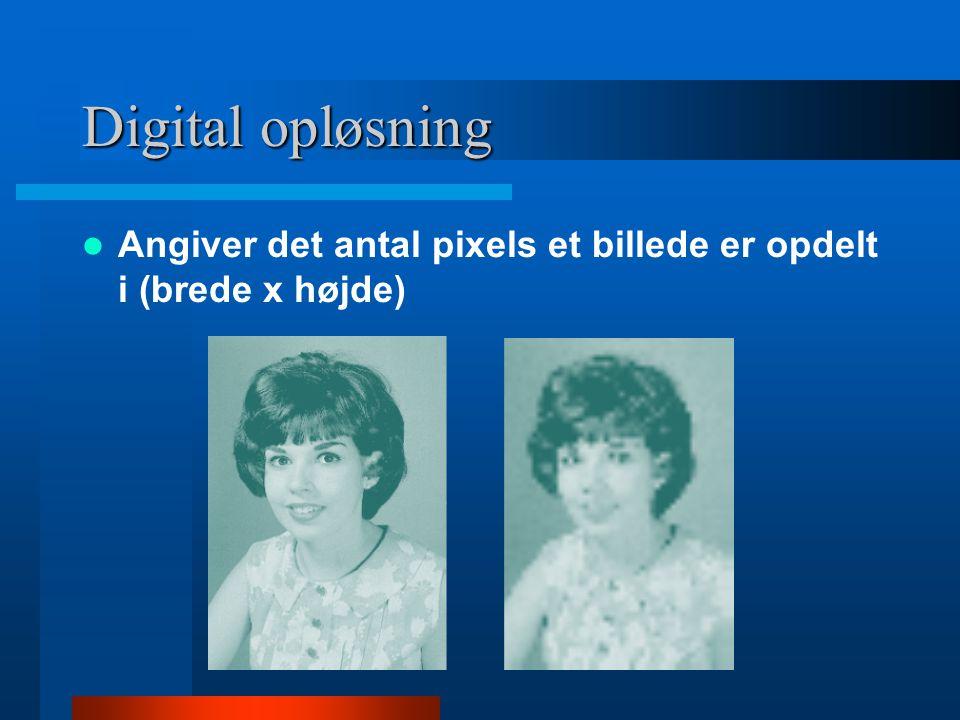 Digital opløsning  Eksempel –Scanner: 600 ppi (pixels per inch) –Monitor: 72 dpi (dots per inch) –Digital kamera: 480 x 640 pixels