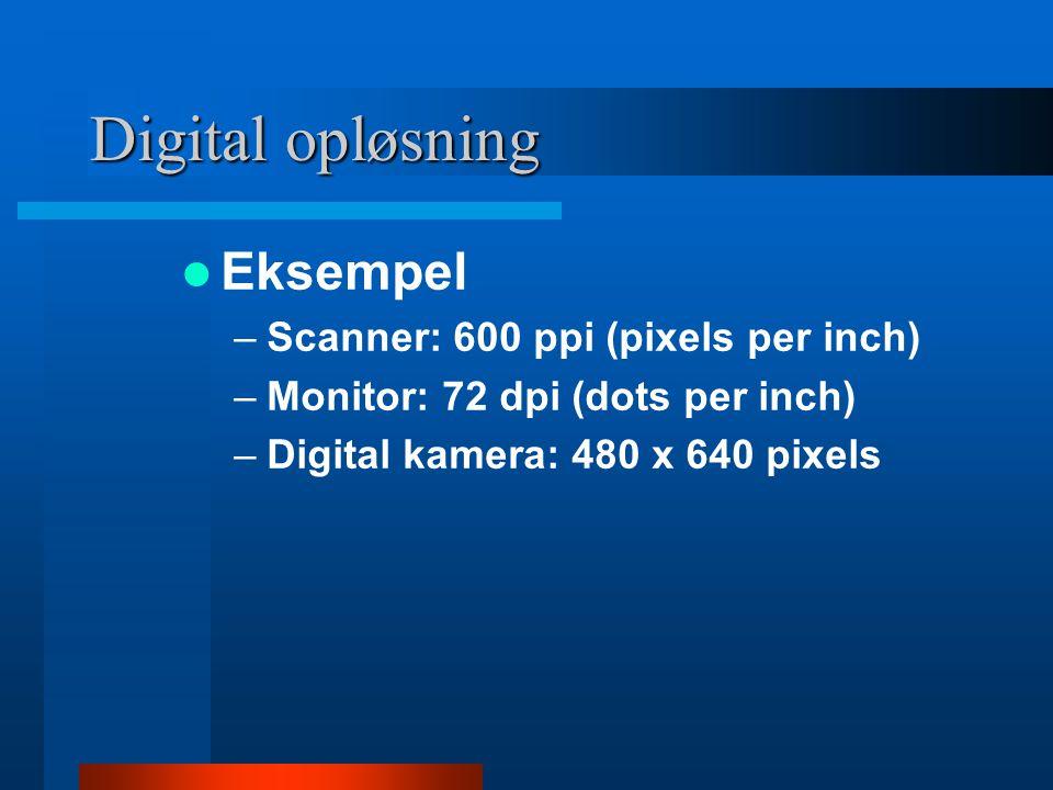 Digital opløsning  Et 8 x 10 print scannet ved 300 ppi giver en fil med 2,400 x 3,000 pixels  Et 35mm negativ scannet ved 2,100 ppi giver en fil på 2,000 x 3,000 pixels