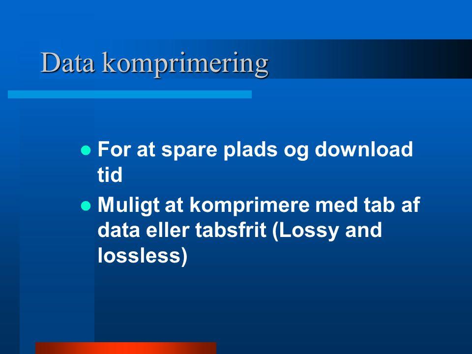 Data komprimering  Tabsfri –Muligt at genskabe fil identisk med original filen  Tabsgenereret –Original data udsmides ved komprimeringen, kan ikke genskabes