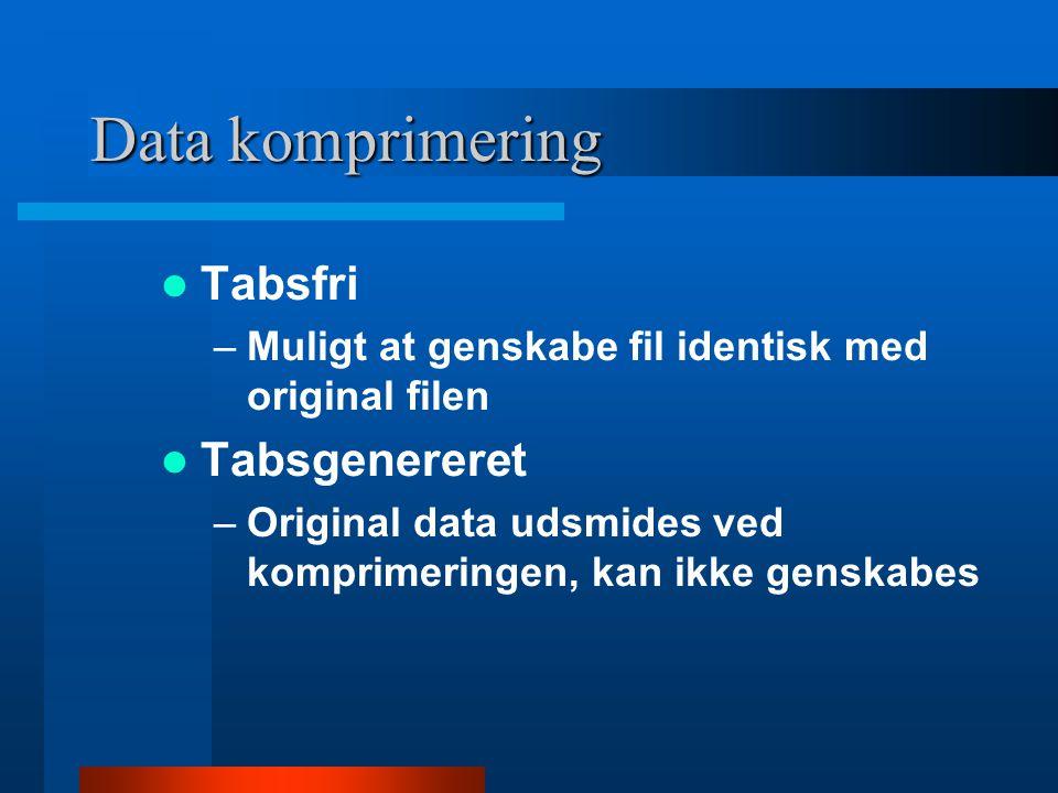 Data komprimering  LZW (tabsfri) –Lempel-Ziv-Welch  JPEG (tab) –Joint Photographic Experts Group