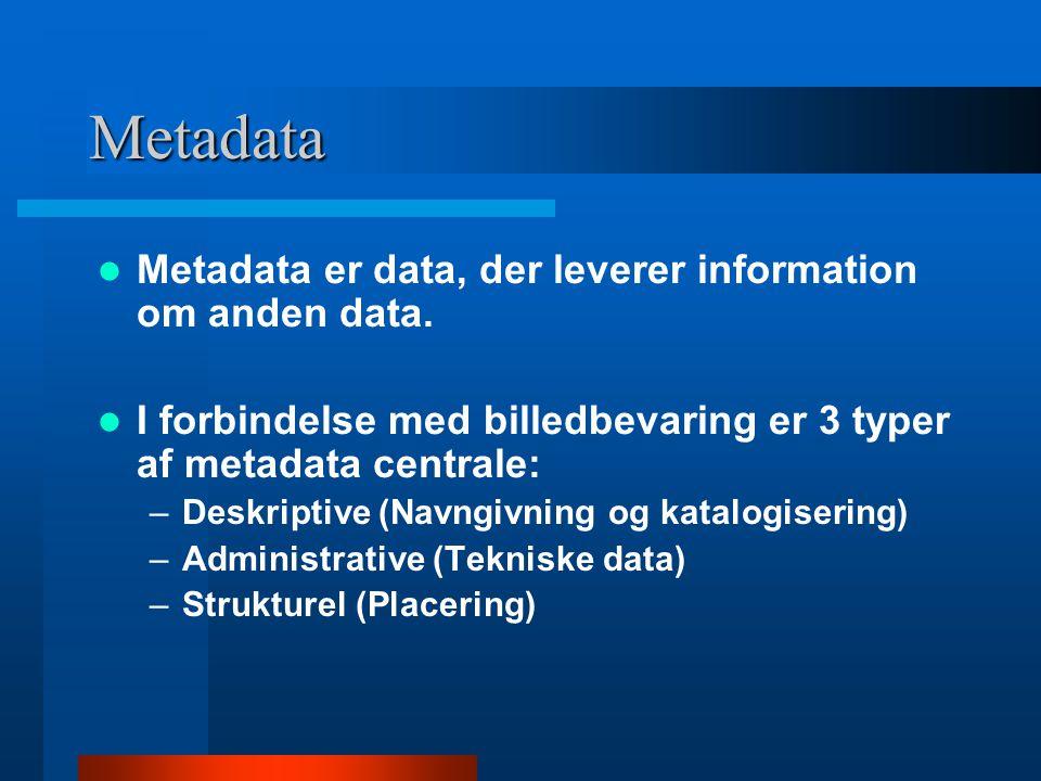 Metadata Eksempel:  Deskriptive: dato, titel, type, emne, etc.