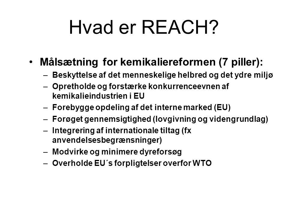 Hvad er REACH? •Målsætning for kemikaliereformen (7 piller): –Beskyttelse af det menneskelige helbred og det ydre miljø –Opretholde og forstærke konku