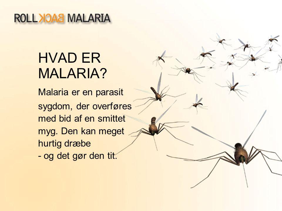 HVAD ER MALARIA? Malaria er en parasit sygdom, der overføres med bid af en smittet myg. Den kan meget hurtig dræbe - og det gør den tit.