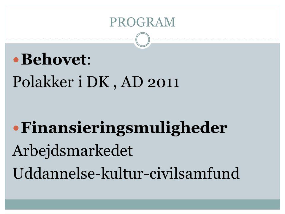 PROGRAM  Behovet: Polakker i DK, AD 2011  Finansieringsmuligheder Arbejdsmarkedet Uddannelse-kultur-civilsamfund