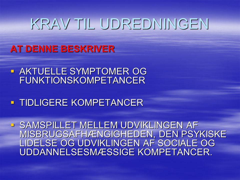 KRAV TIL UDREDNINGEN AT DENNE BESKRIVER  AKTUELLE SYMPTOMER OG FUNKTIONSKOMPETANCER  TIDLIGERE KOMPETANCER  SAMSPILLET MELLEM UDVIKLINGEN AF MISBRU