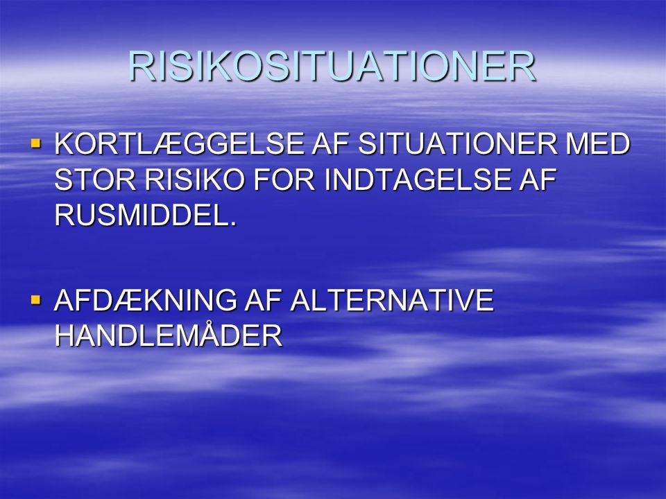 RISIKOSITUATIONER  KORTLÆGGELSE AF SITUATIONER MED STOR RISIKO FOR INDTAGELSE AF RUSMIDDEL.  AFDÆKNING AF ALTERNATIVE HANDLEMÅDER