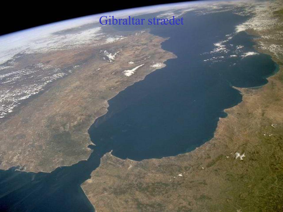Gibraltar strædet