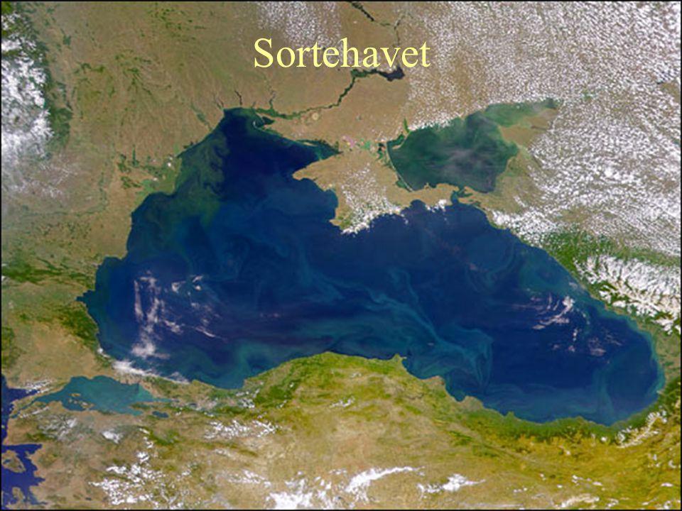 Sortehavet
