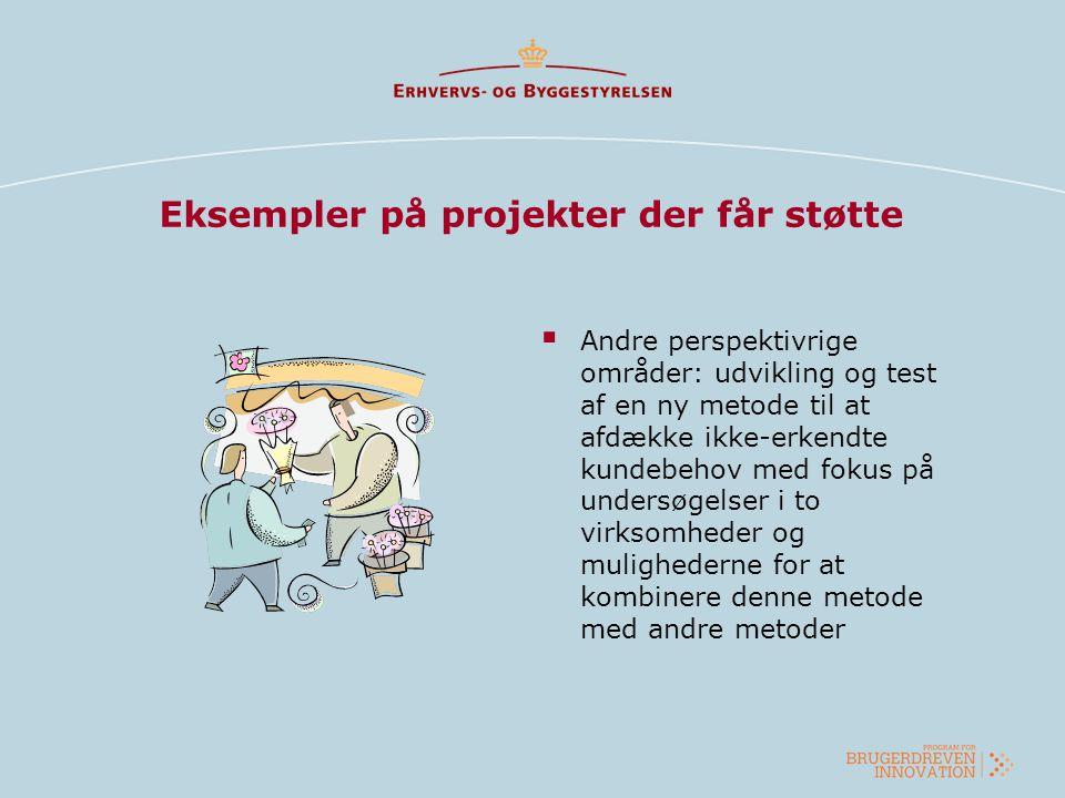 Eksempler på projekter der får støtte  Andre perspektivrige områder: udvikling og test af en ny metode til at afdække ikke-erkendte kundebehov med fo