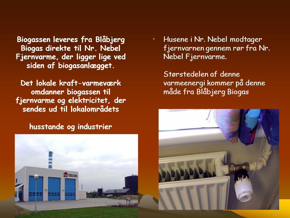Biogassen leveres fra Blåbjerg Biogas direkte til Nr. Nebel Fjernvarme, der ligger lige ved siden af biogasanlægget. Det lokale kraft-varmeværk omdann