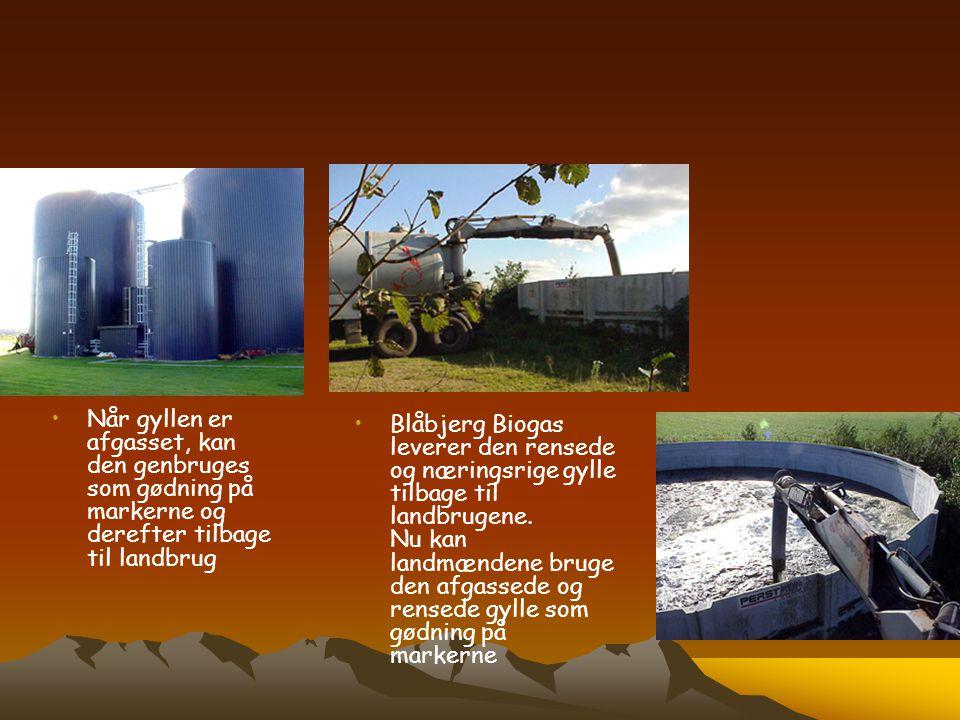•Når gyllen er afgasset, kan den genbruges som gødning på markerne og derefter tilbage til landbrug • •Blåbjerg Biogas leverer den rensede og næringsr