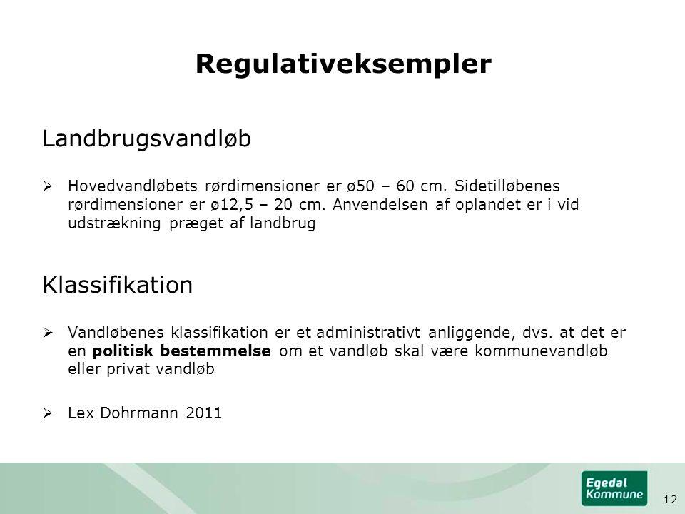 Regulativeksempler Landbrugsvandløb  Hovedvandløbets rørdimensioner er ø50 – 60 cm.