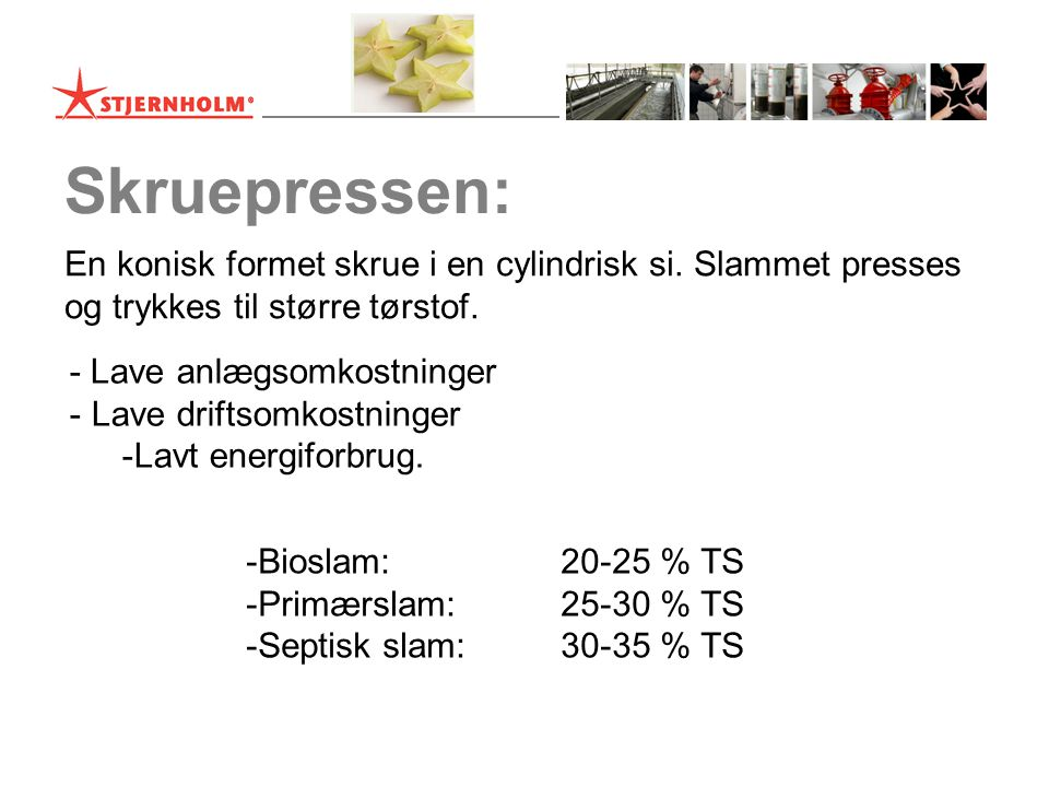 Skruepressen: En konisk formet skrue i en cylindrisk si.