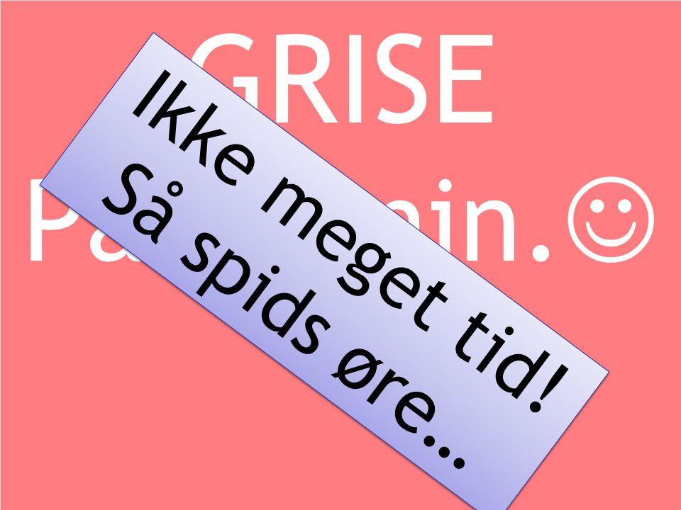 Oplæg vedr. Sundhed og produktion hos produktionsdyr 16. november 2009 Svinedyrlæge - Kristian Viekilde fynvet.dk GRISE På 15 min.  GRISE På 15 min.