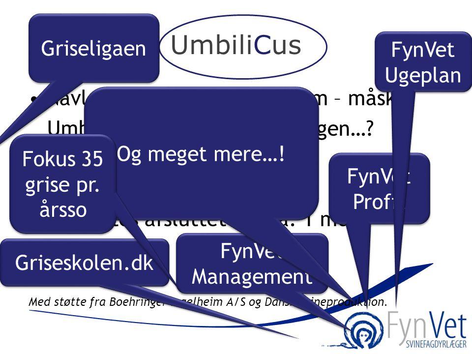 UmbiliCus •Navlebrok er et stort problem – måske Umbilicus er en del af løsningen…? •193 grise er sat i forsøg •Forventes afsluttet om ca. 1 mdr. Med