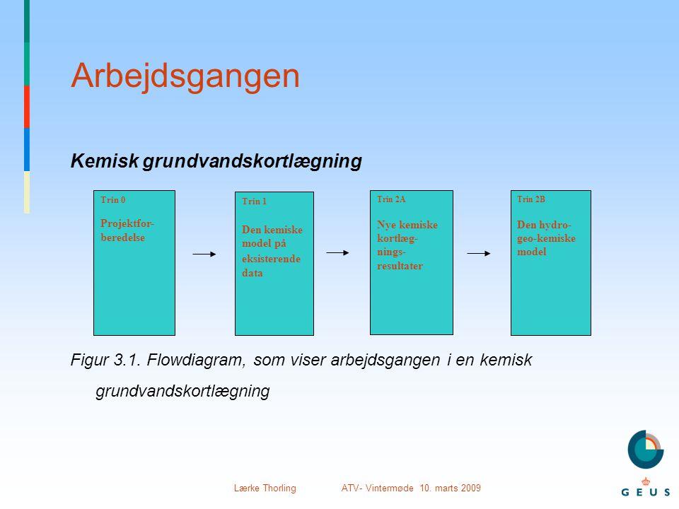 Lærke Thorling ATV- Vintermøde 10. marts 2009 Arbejdsgangen Kemisk grundvandskortlægning Figur 3.1. Flowdiagram, som viser arbejdsgangen i en kemisk g