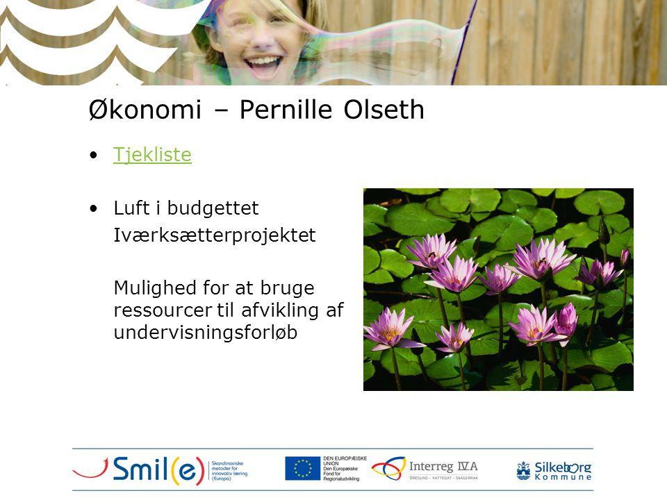 Økonomi – Pernille Olseth •TjeklisteTjekliste •Luft i budgettet Iværksætterprojektet Mulighed for at bruge ressourcer til afvikling af undervisningsfo