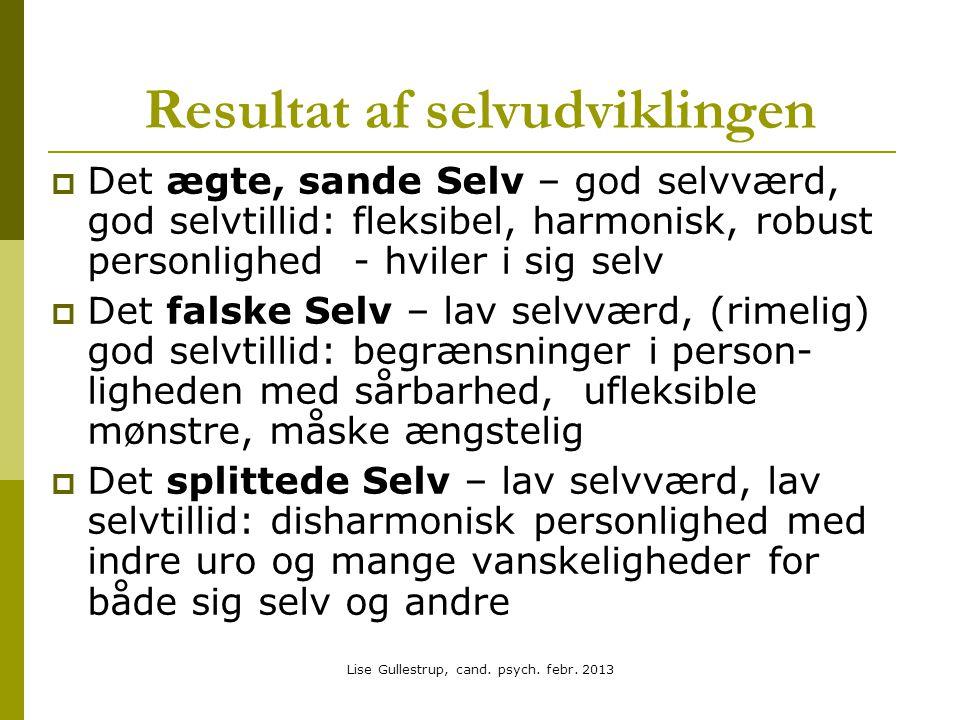 Lise Gullestrup, cand.psych. febr.