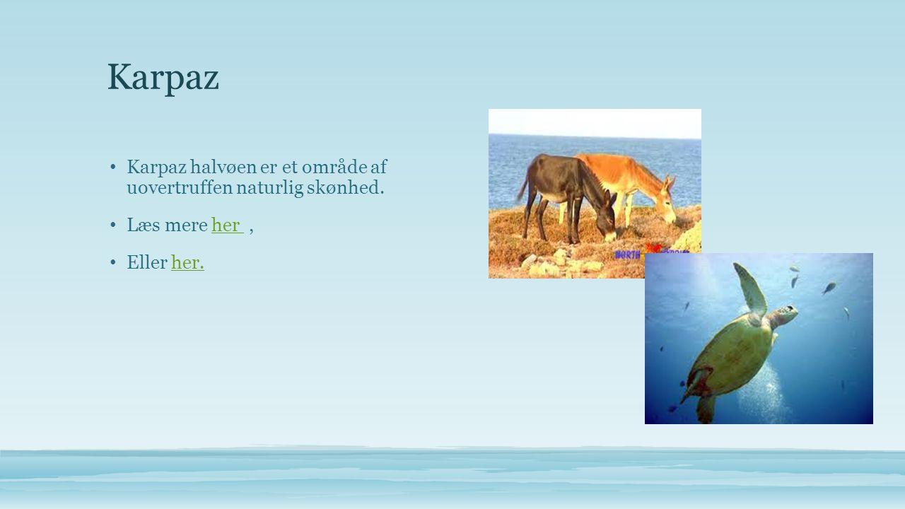 Karpaz • Karpaz halvøen er et område af uovertruffen naturlig skønhed.