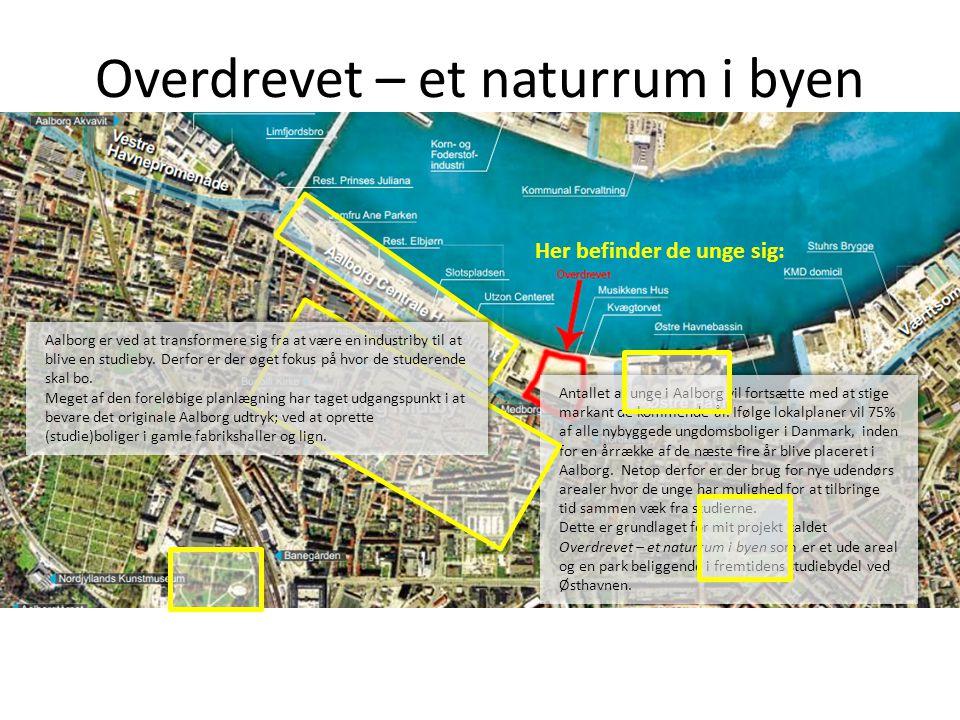 Overdrevet – et naturrum i byen Antallet af unge i Aalborg vil fortsætte med at stige markant de kommende år. Ifølge lokalplaner vil 75% af alle nybyg
