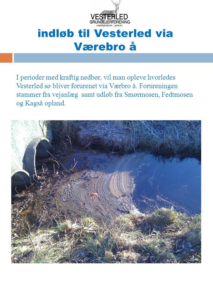 indløb til Vesterled via Værebro å I perioder med kraftig nedbør, vil man opleve hvorledes Vesterled sø bliver forurenet via Værbro å.