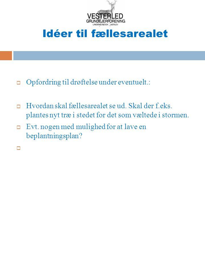Idéer til fællesarealet  Opfordring til drøftelse under eventuelt.:  Hvordan skal fællesarealet se ud.