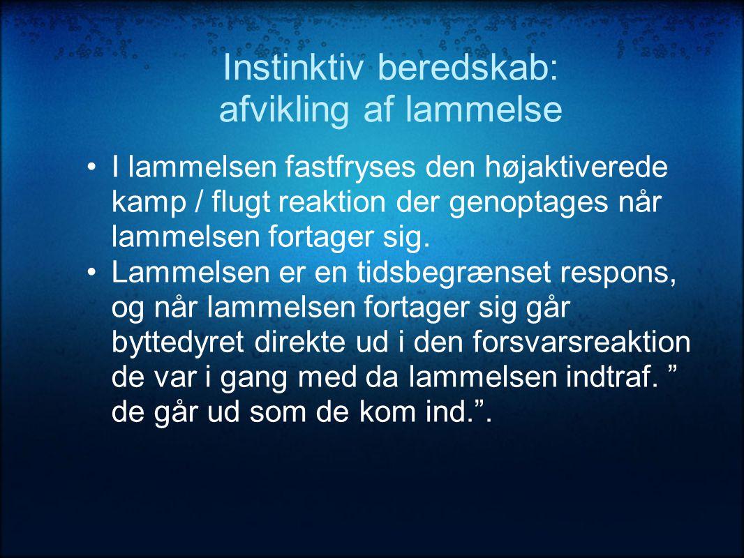 Instinktiv beredskab: afvikling af lammelse •I lammelsen fastfryses den højaktiverede kamp / flugt reaktion der genoptages når lammelsen fortager sig.