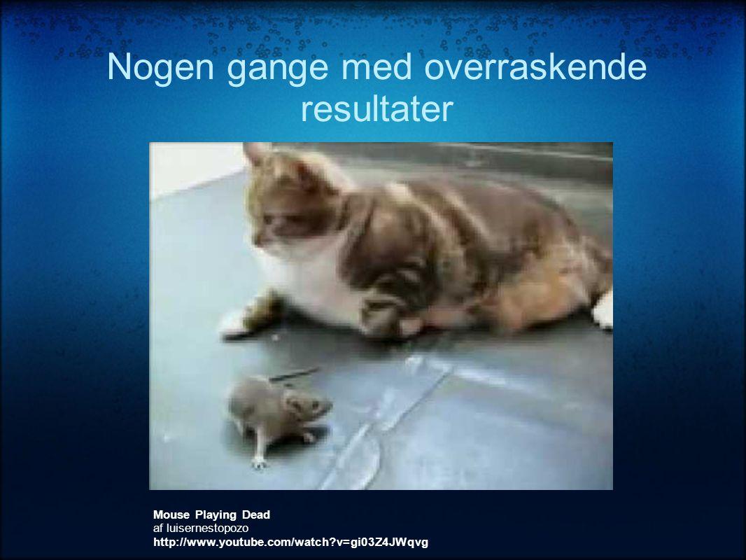 Nogen gange med overraskende resultater Mouse Playing Dead af luisernestopozo http://www.youtube.com/watch?v=gi03Z4JWqvg