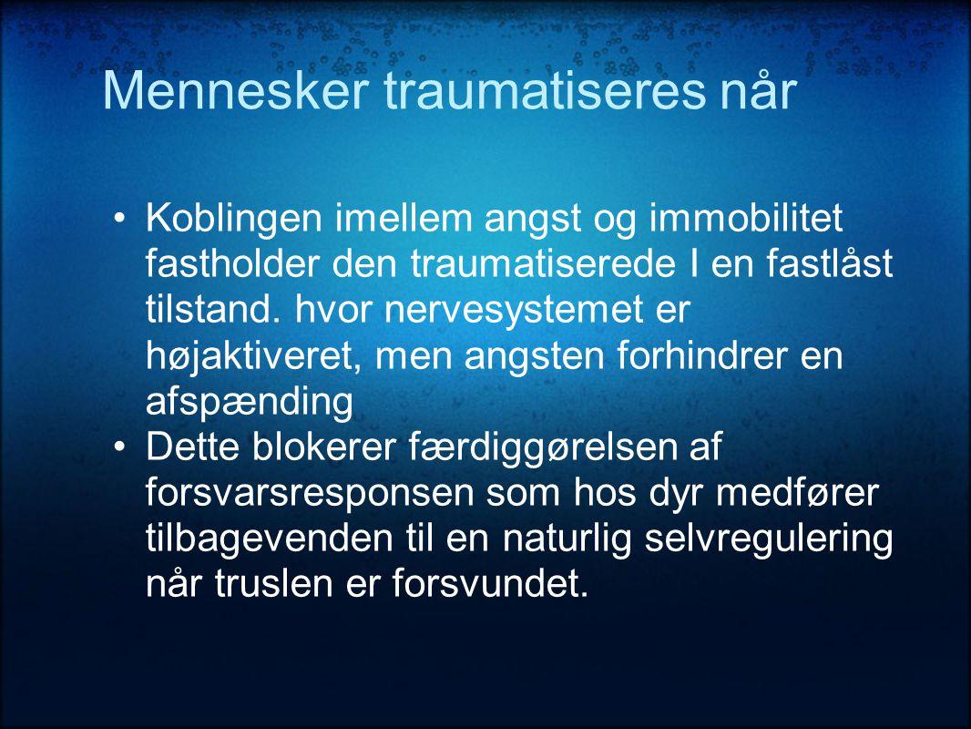 Mennesker traumatiseres når •Koblingen imellem angst og immobilitet fastholder den traumatiserede I en fastlåst tilstand.