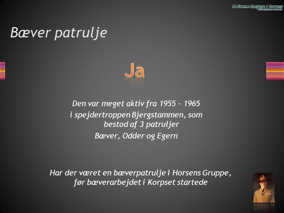 Bæver patrulje Den var meget aktiv fra 1955 – 1965 i spejdertroppen Bjergstammen, som bestod af 3 patruljer Bæver, Odder og Egern Har der været en bæv