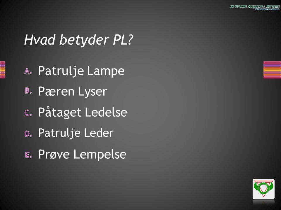 Hvad betyder PL? Prøve Lempelse Patrulje Lampe Påtaget Ledelse Pæren Lyser Patrulje Leder