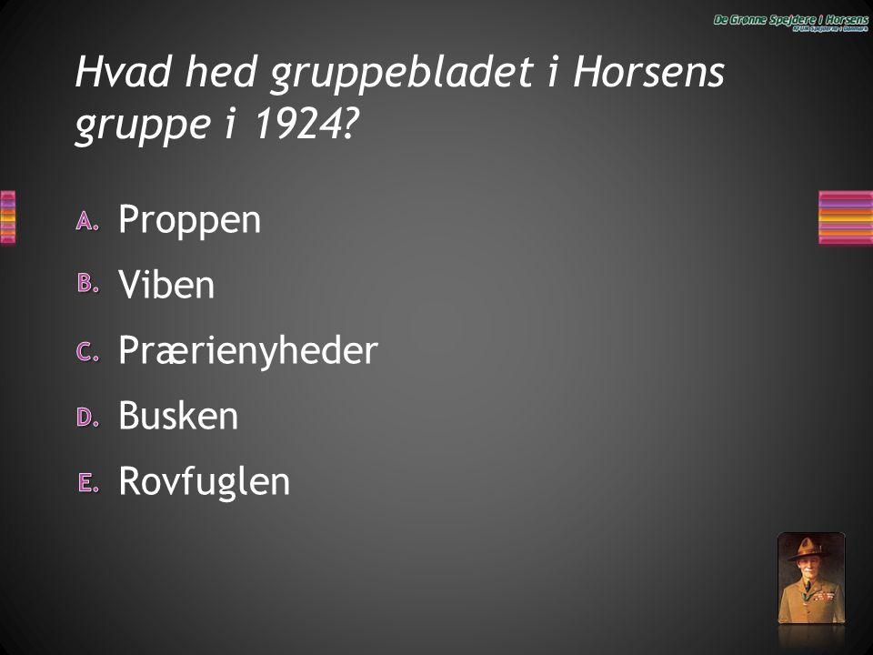 Hvad hed gruppebladet i Horsens gruppe i 1924? Rovfuglen Busken Prærienyheder Viben Proppen