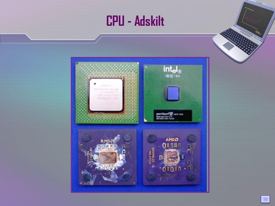 CPU - Adskilt