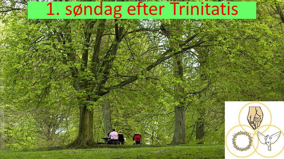 1. søndag efter Trinitatis