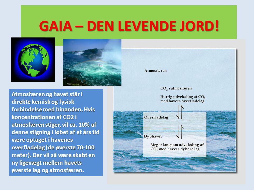 GAIA – DEN LEVENDE JORD! Atmosfæren og havet står i direkte kemisk og fysisk forbindelse med hinanden. Hvis koncentrationen af CO2 i atmosfæren stiger