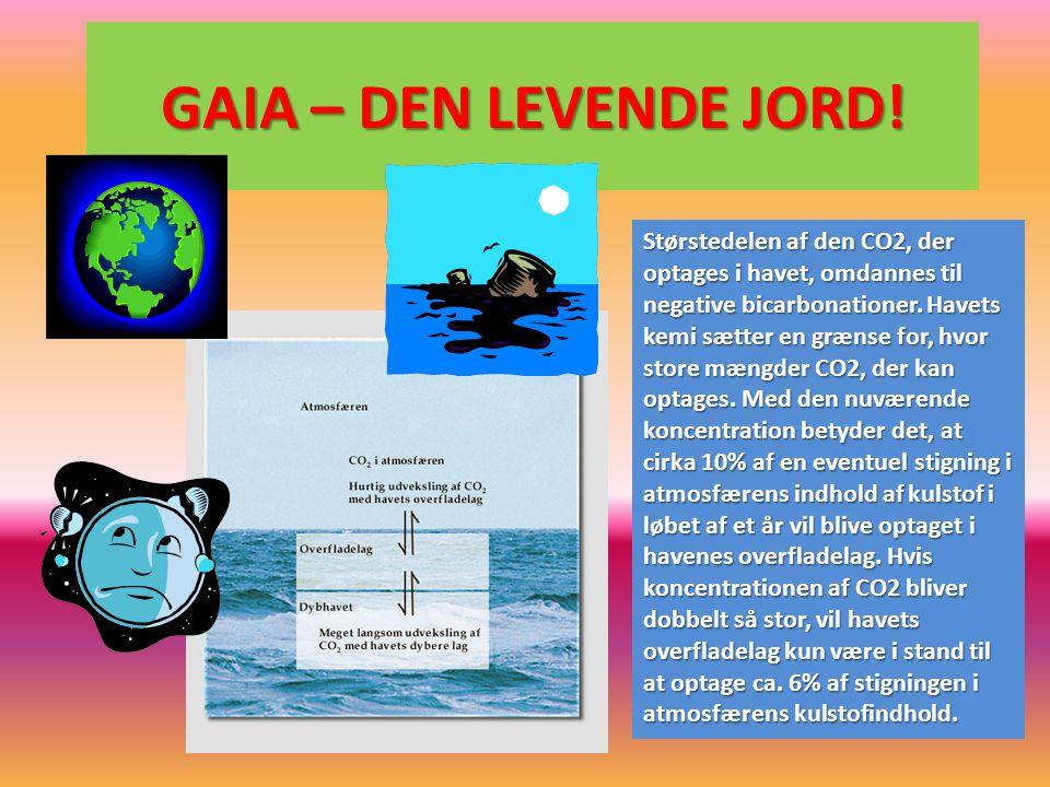 GAIA – DEN LEVENDE JORD! Størstedelen af den CO2, der optages i havet, omdannes til negative bicarbonationer. Havets kemi sætter en grænse for, hvor s
