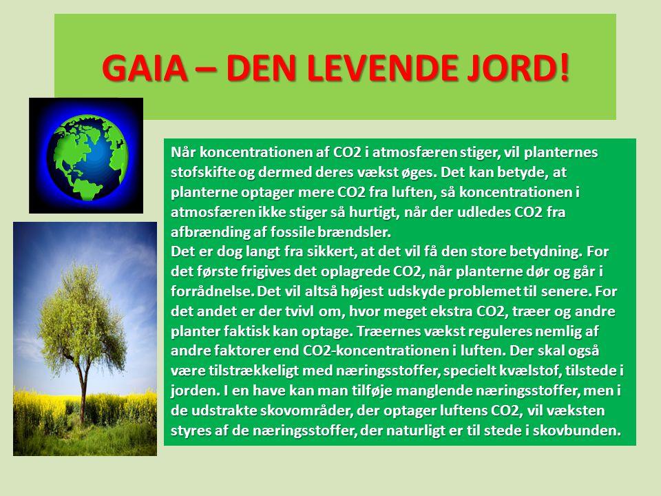 GAIA – DEN LEVENDE JORD! Når koncentrationen af CO2 i atmosfæren stiger, vil planternes stofskifte og dermed deres vækst øges. Det kan betyde, at plan