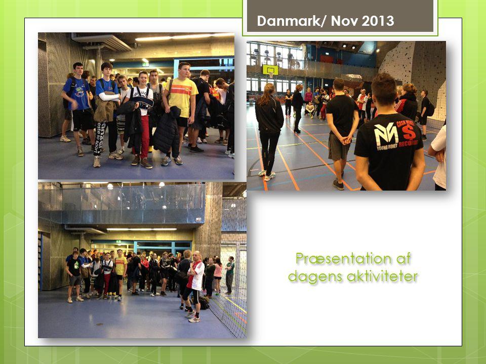 Danmark/ Nov 2013 Præsentation af dagens aktiviteter