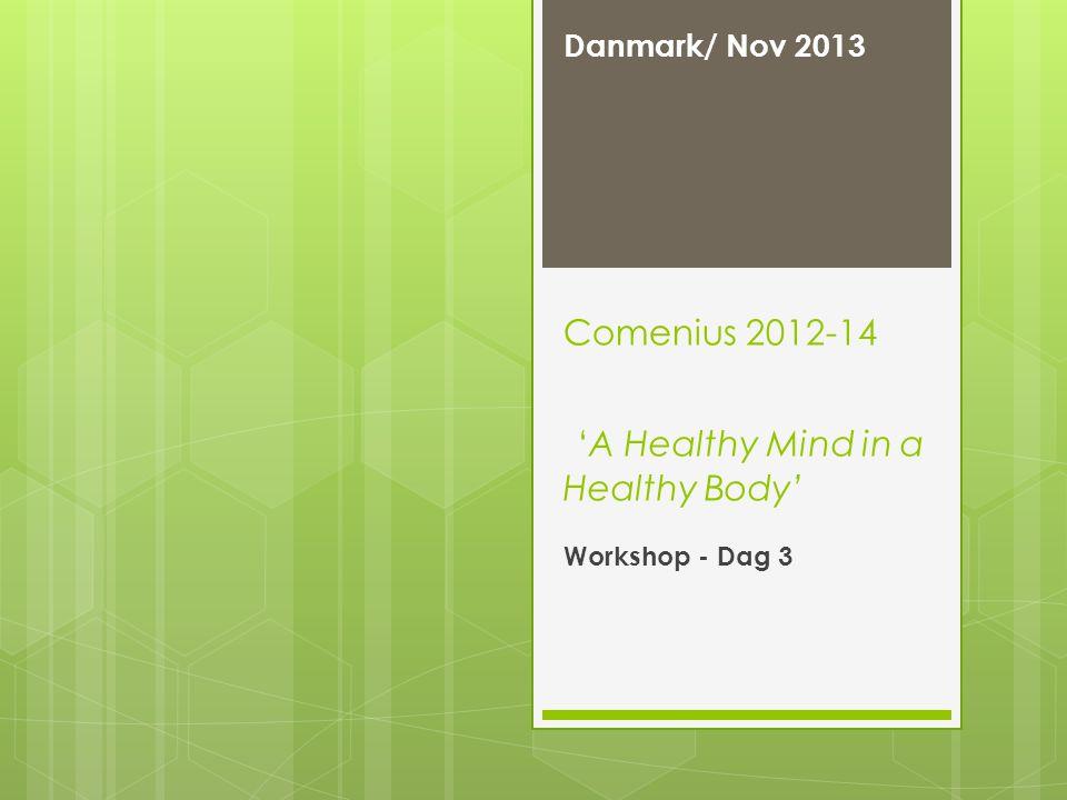 Comenius 2012-14 'A Healthy Mind in a Healthy Body' Danmark/ Nov 2013 Workshop - Dag 3