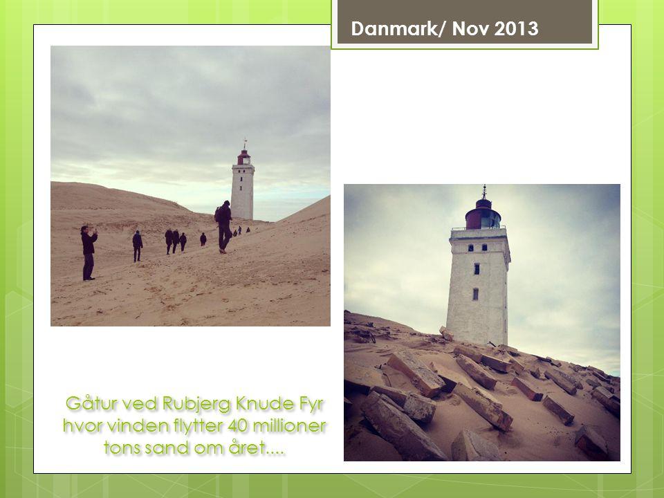 Danmark/ Nov 2013 Gåtur ved Rubjerg Knude Fyr hvor vinden flytter 40 millioner tons sand om året....