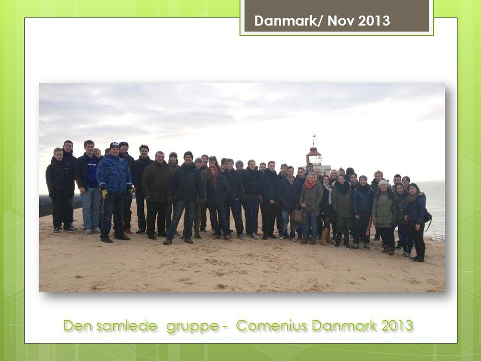 Den samlede gruppe - Comenius Danmark 2013