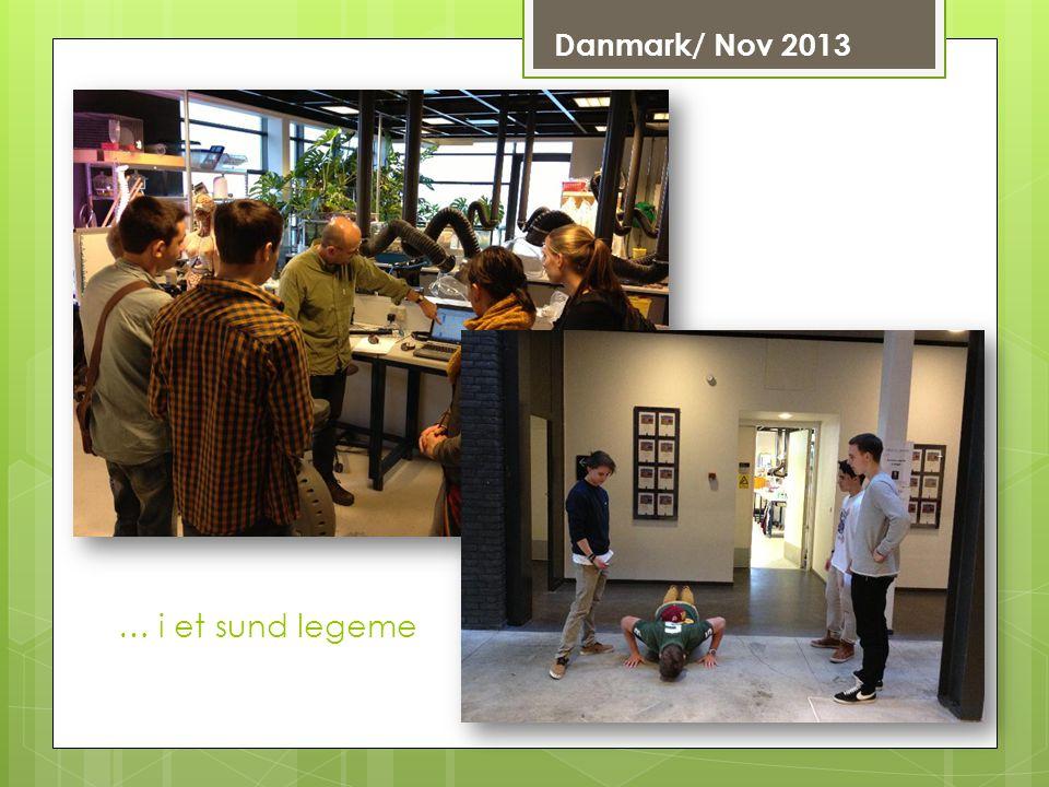 Danmark/ Nov 2013 … i et sund legeme