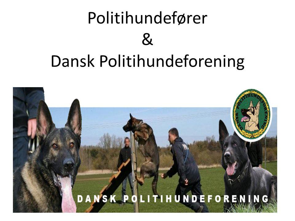Politihundefører & Dansk Politihundeforening