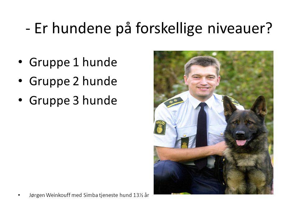 - Er hundene på forskellige niveauer? • Gruppe 1 hunde • Gruppe 2 hunde • Gruppe 3 hunde • Jørgen Weinkouff med Simba tjeneste hund 13½ år