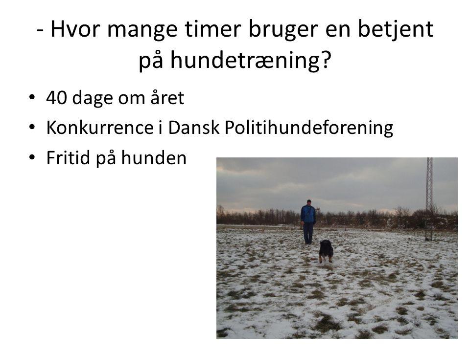 - Hvor mange timer bruger en betjent på hundetræning? • 40 dage om året • Konkurrence i Dansk Politihundeforening • Fritid på hunden