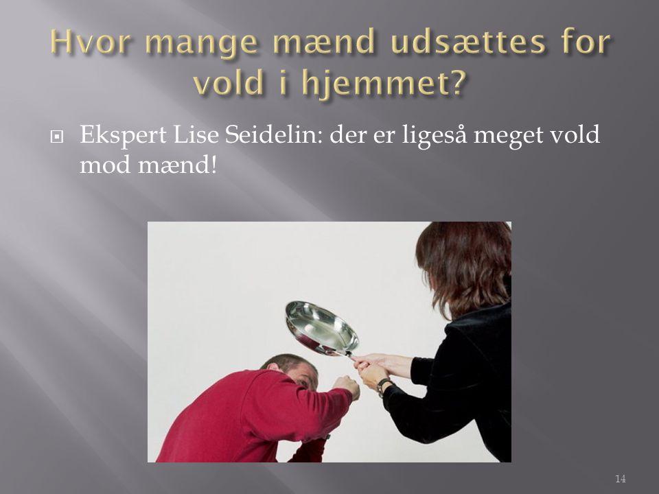  Ekspert Lise Seidelin: der er ligeså meget vold mod mænd! 14