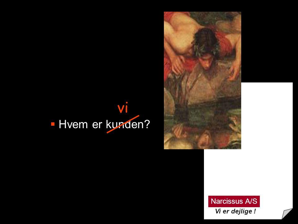 13  Hvem er kunden? vi Narcissus A/S Vi er dejlige !
