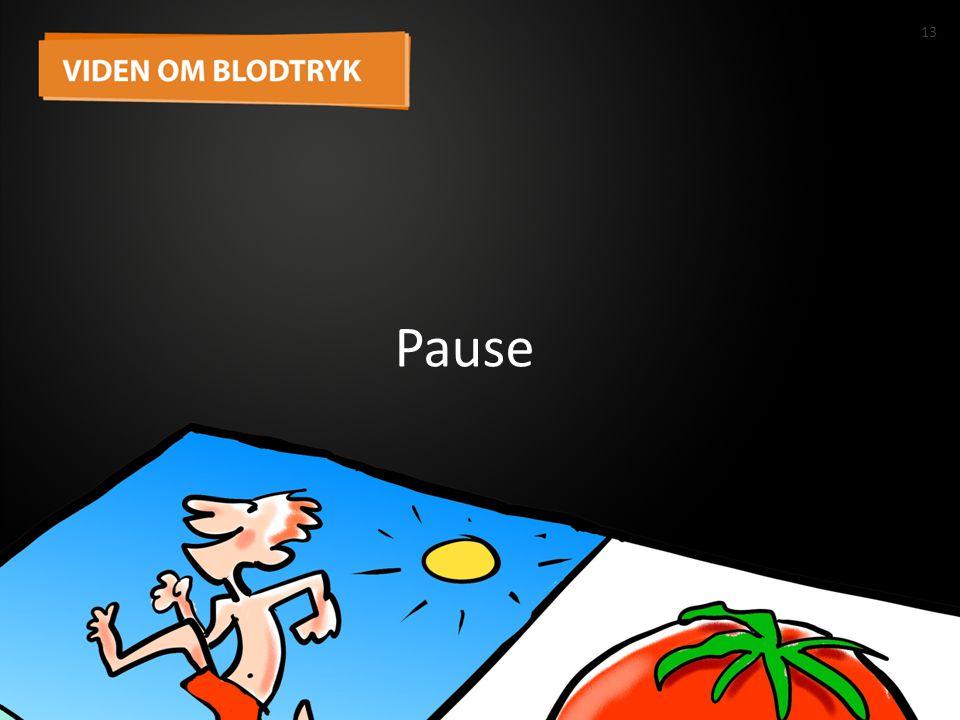 13 Pause 13