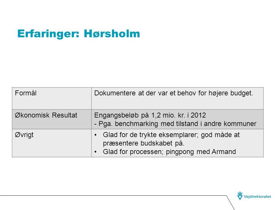 Erfaringer: Hørsholm FormålDokumentere at der var et behov for højere budget.