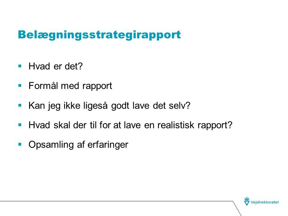 Belægningsstrategirapport  Hvad er det.